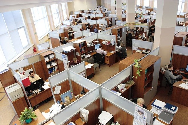 best environment for employees