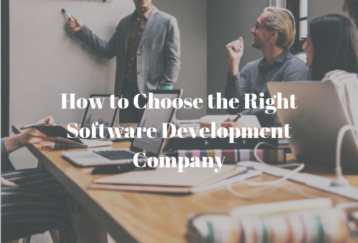 How to Choose the Right Software Development Company | Meldium